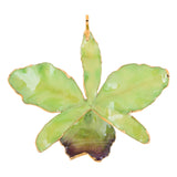 Green<br>Real Cattleya Orchid Ornaments<br>Trimmed in Gold<br>Gift Boxed - GoldRoses.com