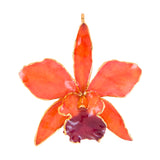 Orange<br>Real Cattleya Orchid Ornaments<br>Trimmed in Gold<br>Ribbon and Hang Tag - GoldRoses.com