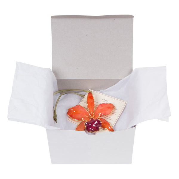 Orange<br>Real Cattleya Orchid Ornaments<br>Trimmed in Gold<br>Gift Boxed - GoldRoses.com