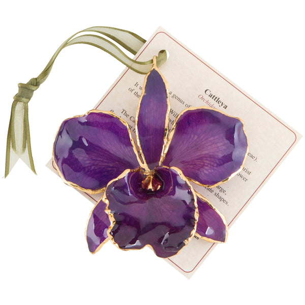 Purple Real Cattleya Orchid Ornament with Green Ribbon and Hang Tag