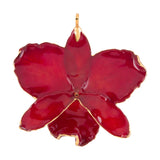 Red<br>Real Cattleya Orchid Ornaments<br>Trimmed in Gold<br>Orchid Ornament Only - GoldRoses.com