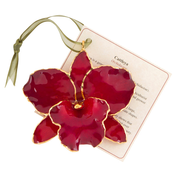 Red Real Cattleya Orchid Ornament with Green Ribbon and Hang Tag