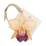 White with Purple Mouth<br>Real Cattleya Orchid Ornaments<br>Trimmed in Gold<br>Ribbon and Hang Tag - GoldRoses.com