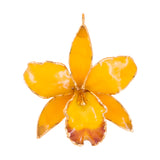 Yellow<br>Real Cattleya Orchid Ornament<br>Trimmed in Gold<br>Orchid Ornament Only - GoldRoses.com