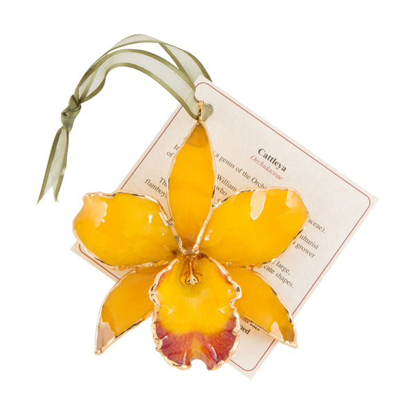 Yellow Real Cattleya Orchid Ornament with Green Ribbon and Hang Tag