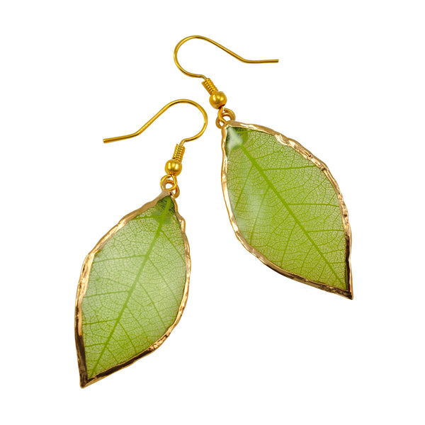 Green Rubber Tree Leaf Earrings with Gold French Hooks