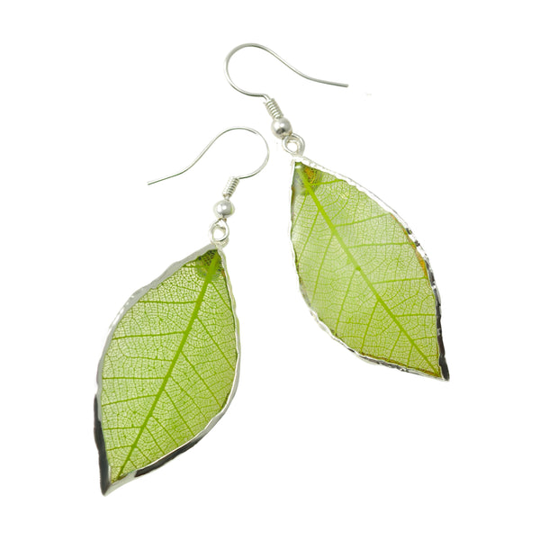 Green Rubber Tree Leaf Earrings with Silver French Hooks