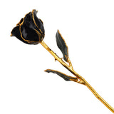 Real Black Gold Trimmed Rose