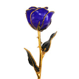 Real Blue Violet Pearl Gold Trimmed Rose