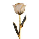 Real White Satin Gold Trimmed Rose