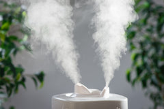 Vaporizing eucalyptus essential oil-Eucalyptus vapors are airborn virus fighters