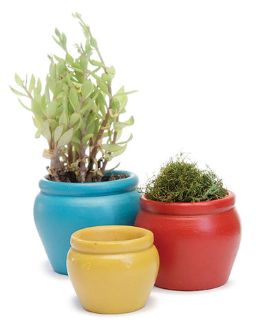 Bright Flower Pots