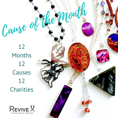 Cause of the month jewelry, 12 months, 12 causes, 12 charities