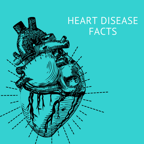 Heart disease facts with anatomical heart