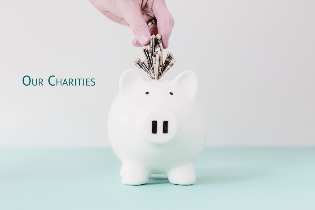 our charities hand putting money in piggy bank