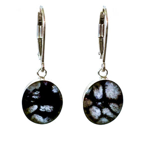oval shaped pendant with cell images of disease in resin on earrings with leverbacks