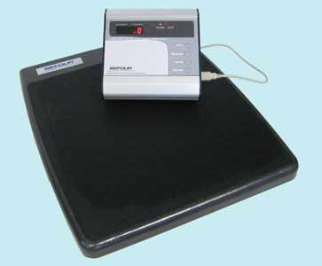Take-A-Weigh Electronic Scale (Model 68987)