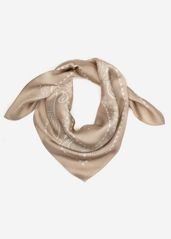 Western Silk Scarf - Dust - house of lolo