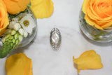 Mellery Mother of Pearl Ring  Rings - TOPAZ AND CO.