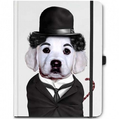 Pets Rock - Famous Faces - Charlie Notebook