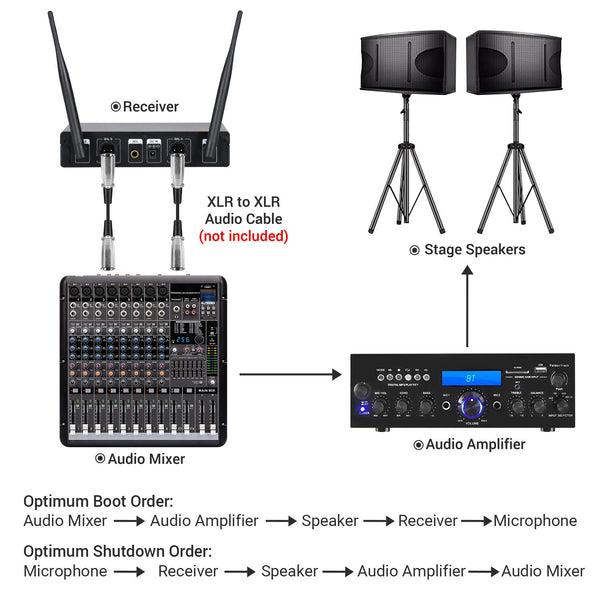 wireless microphone uhf tonor dual professional dynamic mic handheld tonor microphone. Black Bedroom Furniture Sets. Home Design Ideas