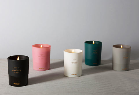 Tangerine & Cassis | Single Wick Candle | Carvao