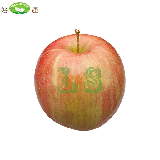 USA Fuji Apple