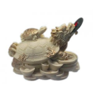 Turtle Ivory 62mm | Carpe Diem With Remi