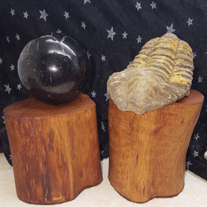 Stand Crystal Ball Hand Crafted Wood Medium | Carpe Diem with Remi