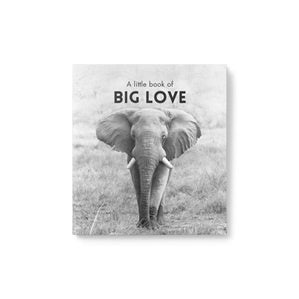 Little Book of | Big Love | Carpe Diem with Remi