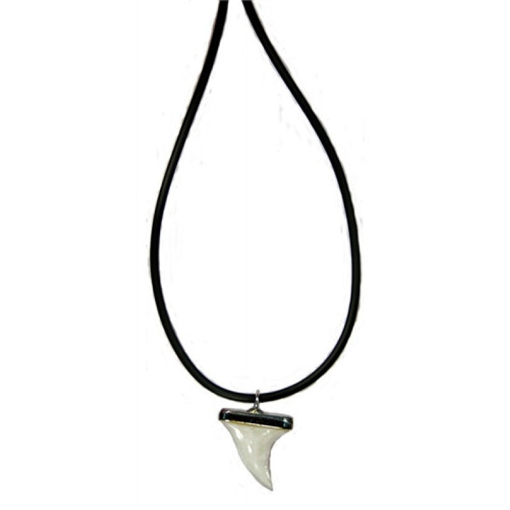 Necklace Sharks Tooth Steel Cap | Carpe Diem With Remi