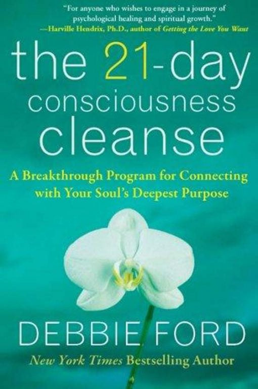 21 Day Consciousness Cleanse - Carpe Diem With Remi