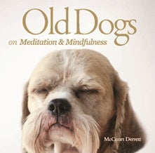 Old Dogs | on|  Meditation and Mindfulness | Carpe Diem with Remi
