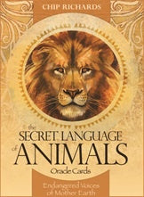 Secret Language Of Animals Oracle | Carpe Diem with Remi