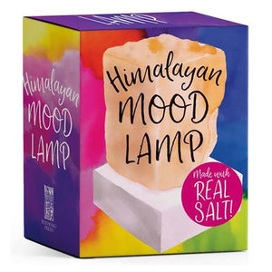 Himalayan Mood Lamp | Carpe Diem With Remi