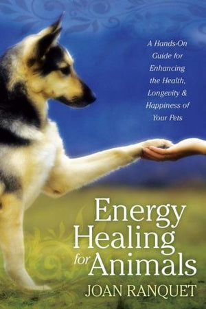 Energy Healing For Animals | Carpe Diem with Remi
