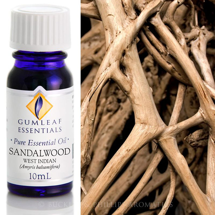 Sandalwood West Indian Essential Oil Gumleaf 10 ml | Carpe Diem With Remi
