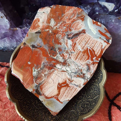 jasper | Red | Silver Leaf | Slice | Polished | Carpe Diem with Remi