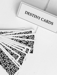 Destiny Cards - Carpe Diem With Remi