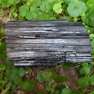 Black Tourmaline Natural Piece - Carpe Diem With Remi