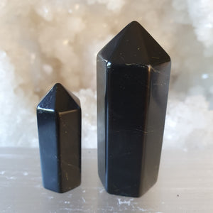 Shungite Generator Small and Medium | Carpe Diem with Remi