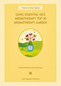 Aromatherapy Guide Chart - Carpe Diem With Remi
