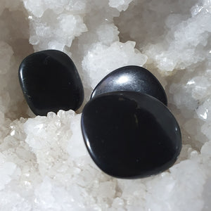 Shungite Palm Stone | Carpe Diem with Remi