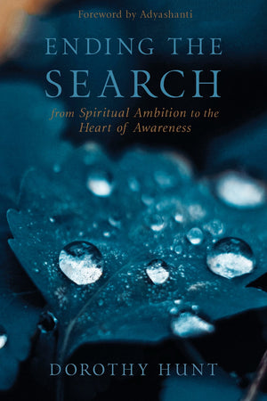 Ending The Search: From Spiritual Ambition | Carpe Diem with Remi