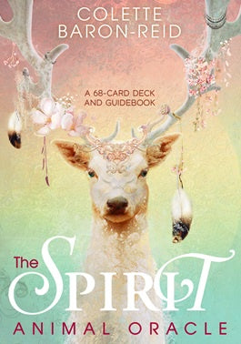 Spirit Animal Oracle | Carpe Diem with Remi