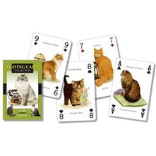 Playing Cards Cats | Carpe Diem With Remi