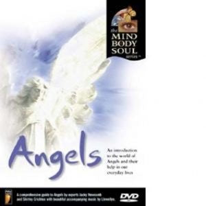 Angels DVD | Carpe Diem with Remi