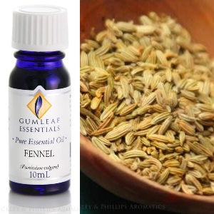 Fennel Essential Oil 10 ml | Carpe Diem with Remi