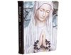 Biblezon Catholic Tablet-Holy Mary