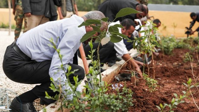 Did You Know: Ethiopia sets a World Record in Tree Planting